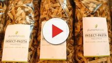 Insectos como alimento: Metro vende pasta con harina de gusanos