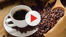 ¿Por qué el café podría ser lo opuesto al cannabis?