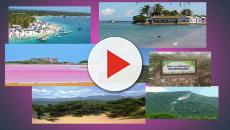 VIDEO:Falcón...paraíso tropical