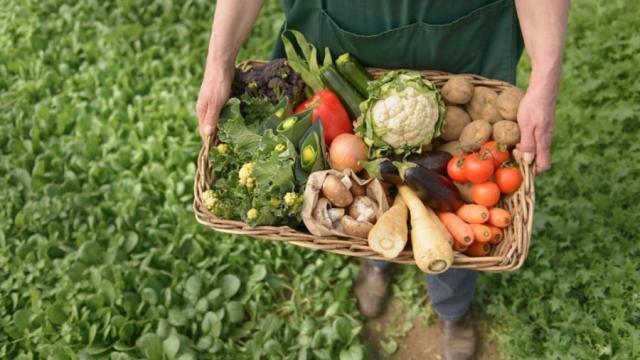 Cooperación de países para la nueva agricultura