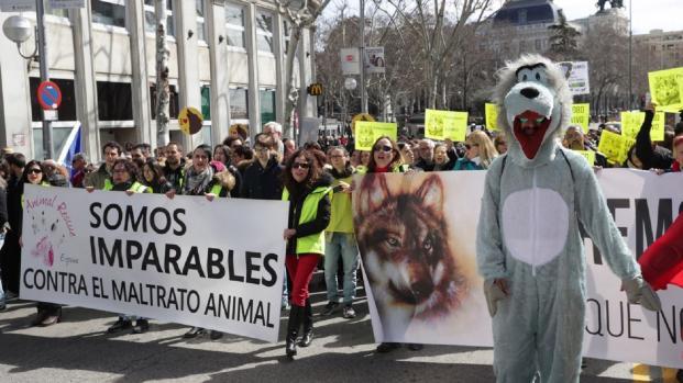 Vídeo: Manifestación de más de 3.000 personas en Madrid por el lobo ibérico