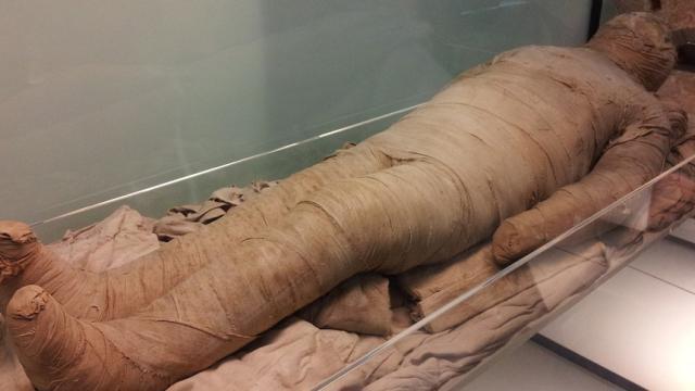 Se confirma el origen de la momia de seis pulgadas