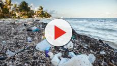 Plastic waste is completely out of control