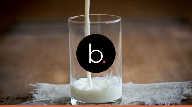 Pus lo leite? Você sabia que é permitido ter pus no leite industrializado?
