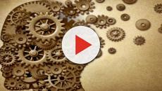 Alzheimer: ecco da cosa è provocato