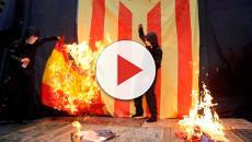 """Los aliados de Carles Puigdemont califican a los españoles como """"chimpacés"""""""