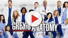 Grey's Anatomy: Fans en duelo después de que dos personajes se conocen