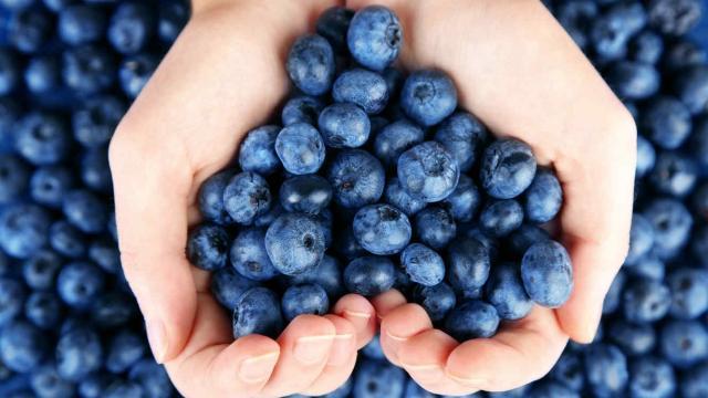4 alimentos que son buenas fuentes de resveratrol