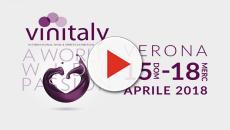 VinItaly 2018, salone internazionale del vino a Verona: date e programma fiera