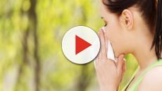 Cómo combatir las alergias de forma natural