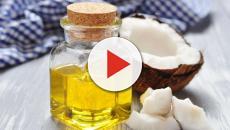 Razones por las cuales el aceite de coco debería agregarse a los cocteles
