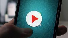 WhatsApp sorprende tutti grazie ad un'incredibile novità - VIDEO