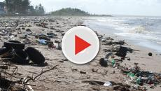 An effective solution for the global solid waste problem