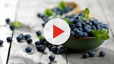 Los Beneficios de los arándanos para la salud