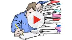 Esami universitari: come sopravvivere?