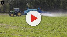 Rapport parlementaire 2018 sur l'utilisation des pesticides en France