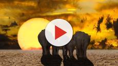 El dióxido de carbono se ha disparado desde el siglo pasado