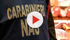 Maxi sequestro di pasta non tracciabile a Napoli