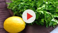 Video:¿Por qué el perejil es tan saludable?