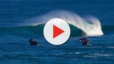 Dos surfistas son mordidos por dos tiburones en el mundial de surf