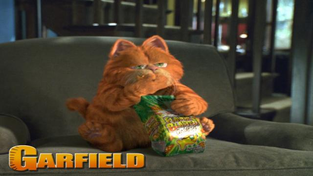 Bill Murray confirma la graciosa razón que firmó para las películas de Garfield