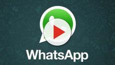 Novo recurso do WhatsApp e Android é oferecido aos usuários do Lollipop