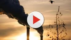 como combatir el cambio climático