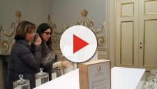 L'Istituto Giorgi di Lucca in visita a Palazzo Ducale