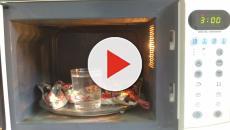 Lo que nunca deberías entrar en tu microonda