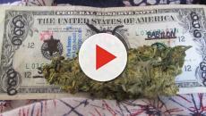 La FDA respalda una droga derivada del cannabis