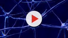 La enfermedad de la neurona motora