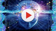 Conoce la realidad de la neurociencia