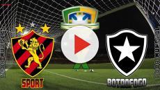 Sport x Botafogo: transmissão do jogo ao vivo na TV e internet