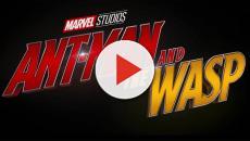 Por qué el fantasma es un personaje femenino en Ant-Man and The Wasp
