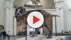La mejor forma para atraer a los niño y adolescentes a los museos