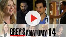 Grey's Anatomy 14: finale di stagione