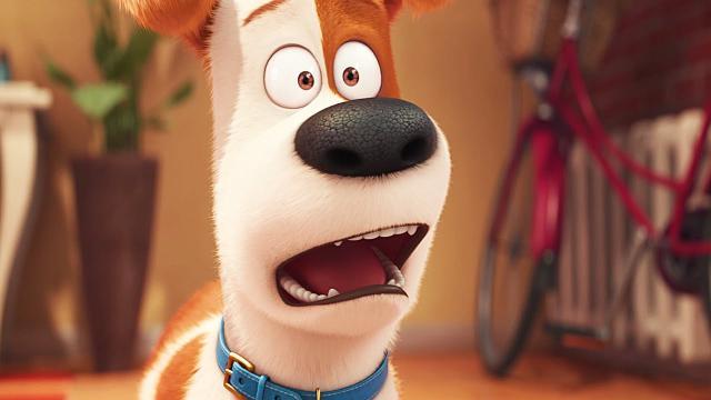 Harrison Ford hizo el casting para 'Secret Life of Pets 2'