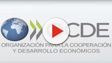 VIDEO: Reforma educativa para mejorar la formación del profesional