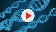 VIDEO - DNA: scoperta la struttura a 4 eliche