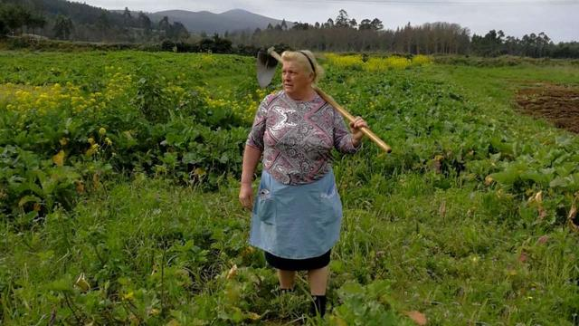 Donald Trump doppelganger snapped in a field in northern Spain