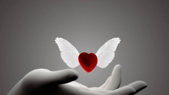 El corazón puede repararse con un spray