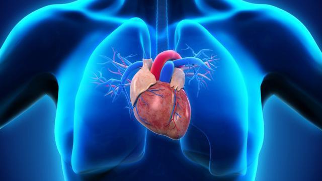 Bienestar cardiovascular: la lección que viene de Bolivia