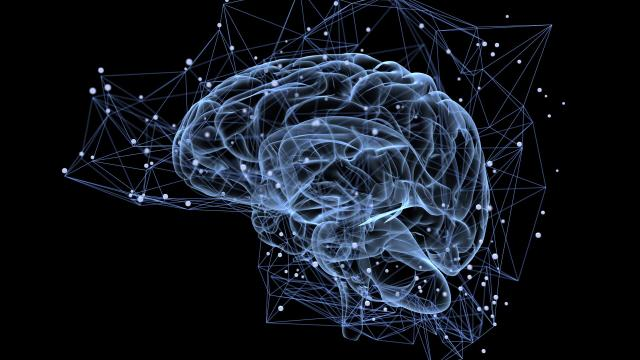 Depresión: el cerebro cambia para protegernos