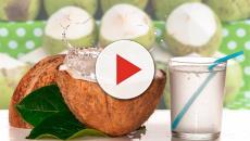 Agua de coco ¿Fruto milagroso?