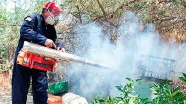 VÍDEO: El paludismo o malaria repunta en Venezuela