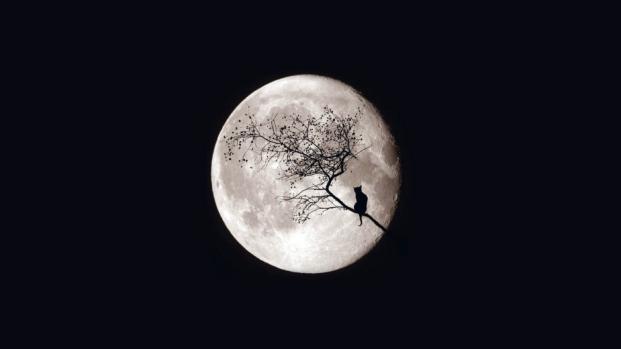 La Luna y su influencia en nuestros sueños