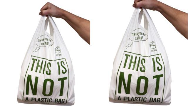 Estudiantes mexicanos logran crear bolsa biodegradable