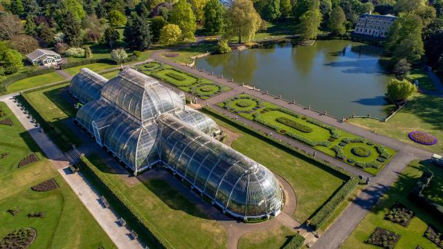 Kew Gardens: el invernadero más grande del mundo reabre sus puertas