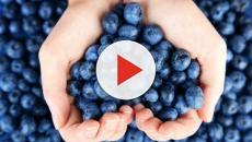 VIDEO: Beneficios de los arándanos para el organismo
