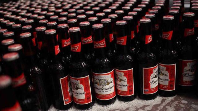 La nueva cerveza, de Budweiser